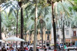 Die besten Häfen: Insider-Tipps für Barcelona –MORE THAN CRUISES