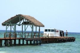 """Nach """"Irma"""" und """"Maria"""": Reedereien ändern Routen"""