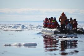 Inuits, Wale und noch mehr Eisbären: Ellis Video-Tagebuch aus der Arktis, Teil 2