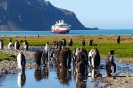 Schiffe für Entdecker: Expeditionskreuzfahrten liegen im Trend – MORE THAN CRUISES